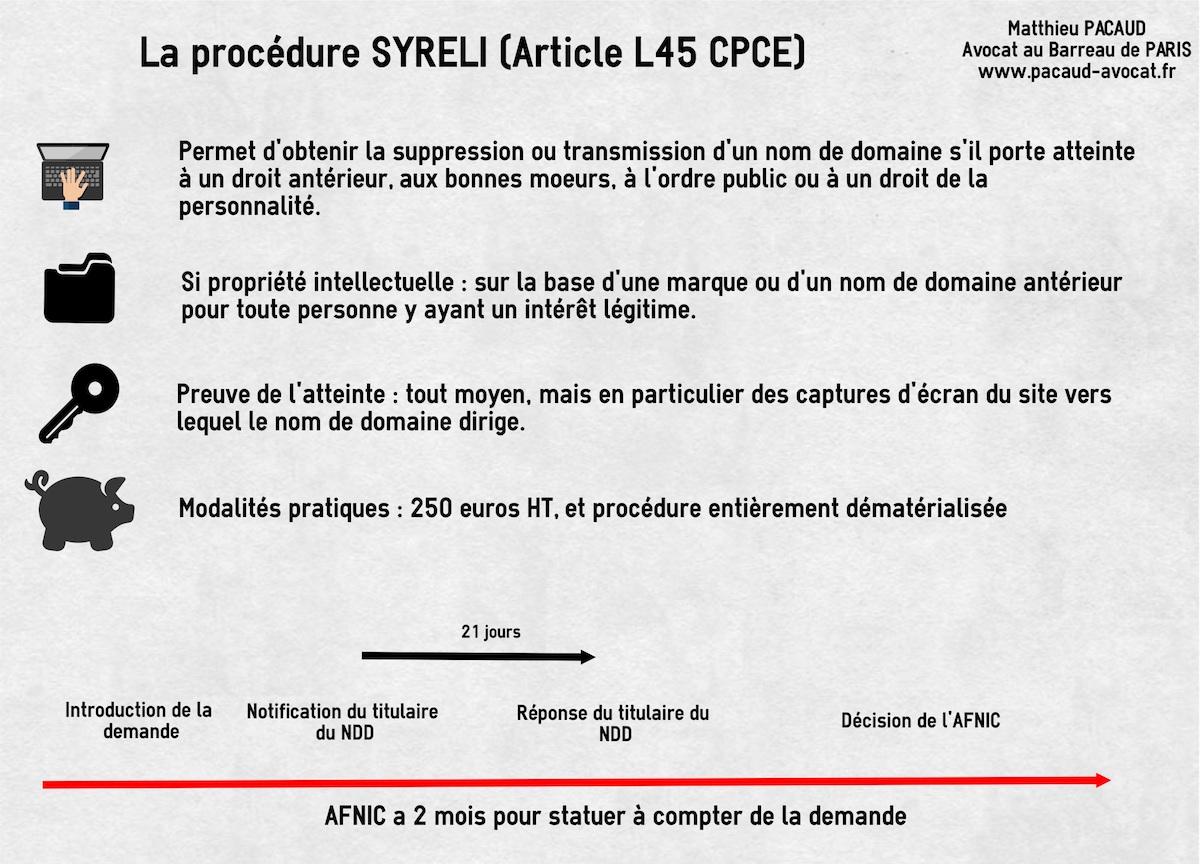 syreli-cybersquatting-nom-domaine-france